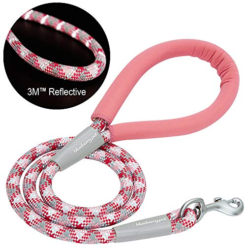 Blueberry Pet Strong Leash