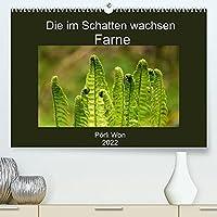 Die im Schatten wachsen - Farne (Premium, hochwertiger DIN A2 Wandkalender 2022, Kunstdruck in Hochglanz): Geheimnisvolle Farnwelt (Monatskalender, 14 Seiten )