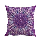 BIBITIME Vintage Bohemian Decorative Pattern Pillowcase Waist Back Cushion Case Throw Pillow Covers Protector Cotton Linen 18x18 inches for Living Room Couch Sofa