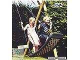 Kleine Mehrkindschaukel STANDARD silber/rot/blau für 2 Kinder, 109 x 53 cm (SPR.M.110) - das Original direkt vom Hersteller die-schaukel.de