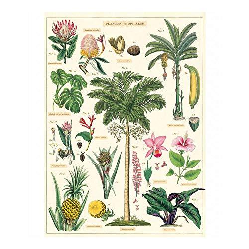 Decorative Paper Sheet Cavallini /& Co 20 x 28 inch Italian Archival Paper House Plants