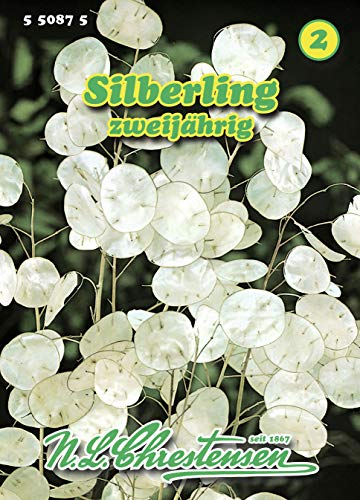 N.L. Chrestensen 550875 Silberling (Silberlingsamen)