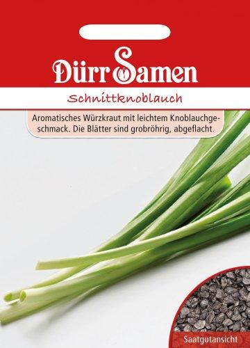 Dürr-Samen Schnittknoblauch