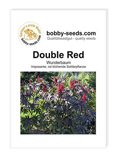 Bobby-Seeds Blumensamen Wunderbaum Double Red Portion