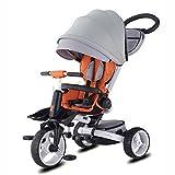 Samchulli Jucy T600 Trike Triciclo Plegable del niño del bebé Bici del Juguete con la Exclusiva de Lluvia, Viento Cubierta (Gris)