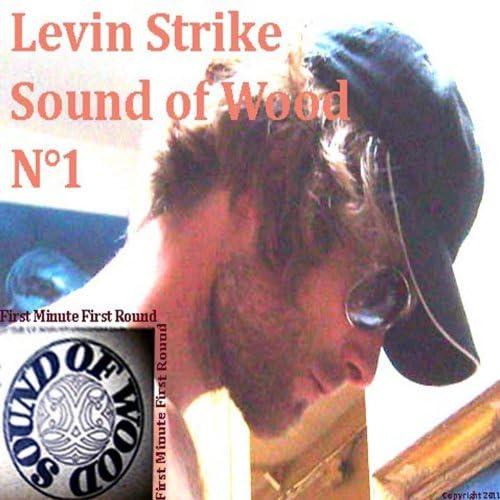 Levin Strike