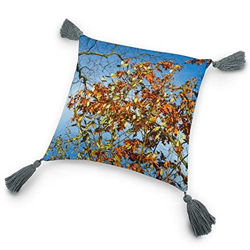Funda de almohada con inserto de 9.8 x 9.8 pulgadas, hojas de otoño, naturaleza, poliestireno, funda de cojín decorativa con borlas para dormitorio, sala de estar, sofá