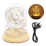 Lumières de dôme en verre, Lampe Cloche en Verre Décorative Lumières de Nuit étoilées Lampes Table LED Chaud Veilleuse Chevet - alimenté par 3 piles AAA ou un câble USB
