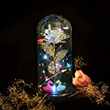Aokebeey Bunte Galaxy Rose mit Led Licht im Glas, Romantische Golden Künstliche Rose Ewige Rose mit Staender Dekoration Geschenk Fuer Muttertag,Geburtstag,Hochzeit,Jubiläum,Valentinstag(Flamingos)