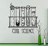 wZUN Calcomanía de Pared de Laboratorio, Pegatina de Vinilo, decoración de Aula de química, decoración de Dormitorio de diseño Personalizado para el hogar, 63X64 cm