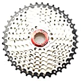 9 Speed Cassette 11-40T MTB Cassette 9 Speed Fit for Mountain Bike, Road Bicycle, MTB, BMX, SRAM,...