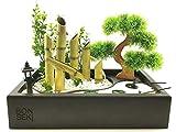 Bonseki Fontana zen da interno 40 x 25cm nero con giardino zen da tavolo, bonsai e led. Personalizzabile.