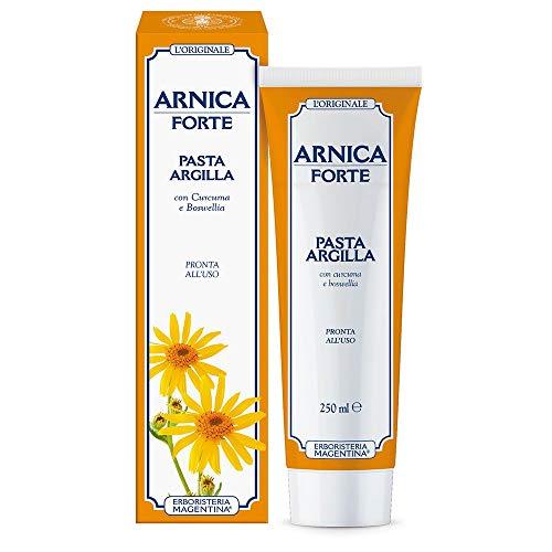 ARNICA FORTE PASTA ARGILLA 250 ml