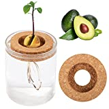 3 Pcs Avocado Tree Growing Kit- 2pcs Avocado Pit Planting Bowl Cork Seed Starter Tray with 3.9''×4.7'' Clear Water Container, Gift for Kids Adult Friends Gardening Lovers