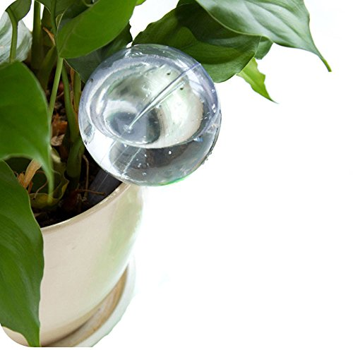 Buy Bargain Plant Waterer Self Watering Devices,Forthery Vacation Potted Plant Watering Spikes Autom...