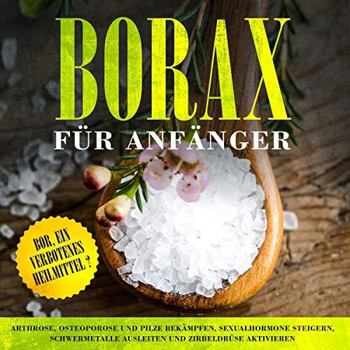 Borax für Anfänger: Bor, ein verbotenes Heilmittel? Titelbild