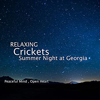 Sleep and Relaxation Nature Sounds Crickets Summer Night