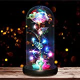 B2LOVER Galaxy Rose Beauty and The Beast Rose Flower Decoration in Glass Dome Gift Artificial Flower for Women Valentine's Day Birthday Wedding