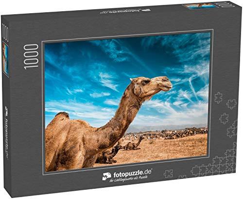 Puzzle 1000 Teile Camel at Pushkar Mela - berühmter jährlicher Kamel- und Viehmarkt - Klassische Puzzle, 1000/200/2000 Teile, in edler Motiv-Schachtel, Fotopuzzle-Kollektion \'Tiere\'