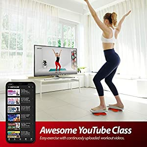 DIPDA LINE Stepper Twisting Indoor Workout Equipment Fitness Cardio Exercise with Bonus Dance Video and APP Guide 3.3 pounds 1.5 Kg Portable