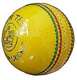 Supreme Quality Indoor Cricket Ball -
