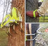 OUTDE Antiscivolo Strumento per Arrampicarsi sugli Alberi, Professionali Tree Climbing Ramponi,Arrampicata Foresta Accessori, Semplice da Usare,Sicurezza Affidabile,B+Seatbelt