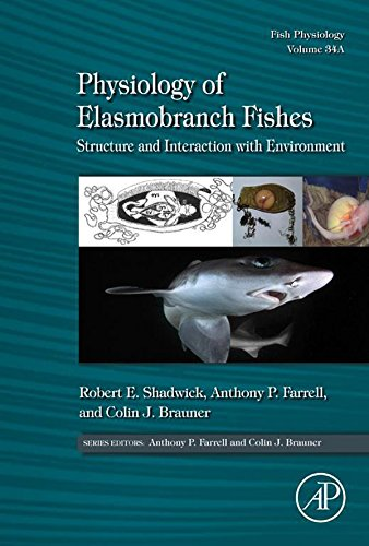 Physiology of Elasmobranch Fishes: Structure and Interaction with Environment: Structure and Interaction with Environment- (ISSN Book 34) (English Edition)