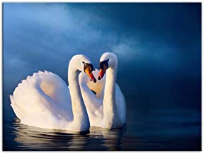 FHYGJD White Swan Couple Love Art Print Canvas Poster,Home Wall Decor 13x20 inch