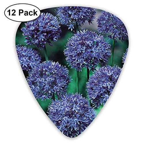Gladiator Alliumin in The Wild Guitar Picks Premium Picks for Acoustic Electric Guitars Bass Or Ukulele Includes Thin, Medium & Heavy Gauges