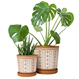 Set of 2, Terracotta Totem Design Planter Pot, 4 Inch and 6 Inch, Ceramic Plant Pot with Drainage Hole and Tray, Terracotta/White