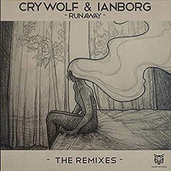 Runaway (The Remixes)