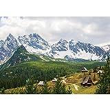Vlies Fototapete PREMIUM PLUS Wand Foto Tapete Wand Bild Vliestapete - Karpaten Riesengebirge Nadelwald Almhütten - no. 3349, Größe:254x184cm Vlies