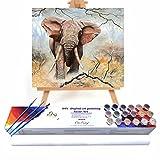 Qegyxk Elefante Animal Pintar por Numeros Adultos Niños Pintura por Números con Pinceles y Pinturas Decoraciones 50x50cm Sin Marco