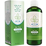 Tea Tree Oil Shampoo for Dandruff Sulfate Free Antibacterial Hair Cleanser Natural Hair Care For Colored Hair - Reduce Itchy Flaky Hair & Scalp with Pure Rosemary and Jojoba Oil Boost Shine and Volume