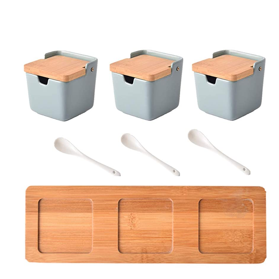 Ln Set of 3 Ceramic Condiment Pots Spice Serving Jars Seasoning Container with Serving Spoons & Bamboo Stand by Home Decor Studio