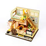 moin moin ドールハウス ミニチュア 手作りキット セット 風情のある 和風 シリーズ 和 日本 初心者向け LEDライト + アクリルケース + 工具セット 付 (軽井沢の別荘)