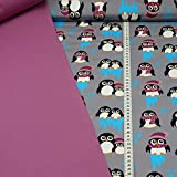 Sweatstoff Toto, Pinguine, beere (50cm x 150cm) und