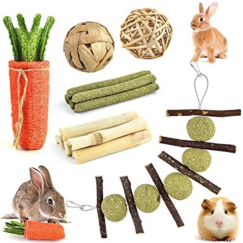 Giocattolo da Masticare per Conigli, Giochi per Piccoli Animali Domestici, Giochi Criceto, Macinare Denti Gioco per Roditori, Naturale Ramo di Mela + Palla dell'erba per Coniglio, Cincillà, Cavia
