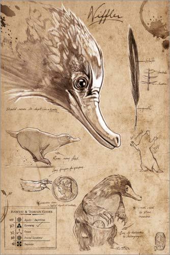 Poster 40 x 60 cm: Magisches Tierwesen - Niffler von Warner Bros. Entertainment GmbH - hochwertiger Kunstdruck, neues Kunstposter