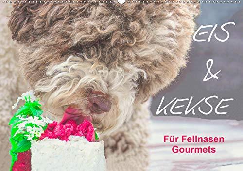 Eis & Kekse - Für Fellnasen Gourmets (Wandkalender 2021 DIN A2 quer)
