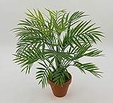 Seidenblumen Roß Palmenbusch/Zimmerpalme 42cm im Topf GA Kunstpflanzen Kunstpalmen künstliche Blumen Pflanzen Palme Dekopalme