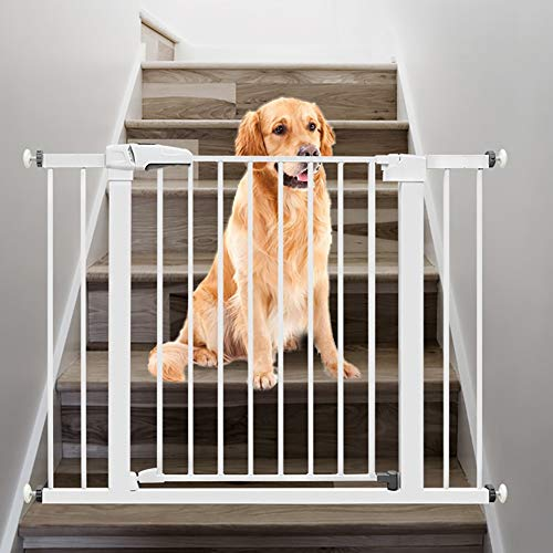 ZZRS Hundebarrieren Treppenhaus und Flur Wand befestigte Baby-Tor, Extra Wide-Welpe Schutzzaun, 2-in-1 Extra Wide Treppe Pet Playpen, for das Haus, Türrahmen, Treppen, Haustier-Welpen-Schutzzaun