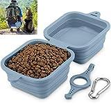 Comedero plegable para perros y gatos, tazón de viaje portátil 2 en 1 para agua y comida, 1240 ml (gris)