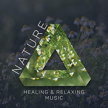 Nature Healing & Relaxing Music - Nature Medicine, Imagination Booster