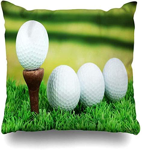 Funda de cojín Funda de cojín Pelota de golf Actividad Pelotas de golf en el césped Cerca Naturaleza Pelota Deportes Recreación Inicio Desafío Círculo Casa Funda de cojín Cuadrado C 18×18pulgada