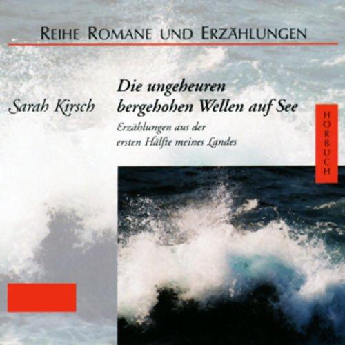 Die ungeheuren bergehohen Wellen auf See Titelbild