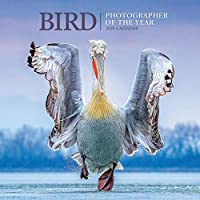 Bird Photographer Of The Year Square Wall Calendar 2020
