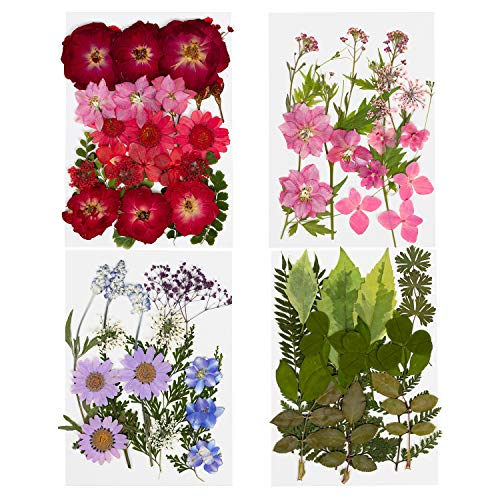 86 PCS Pressed Dried Flowers Mixed Leaves and Petals -Natural Colorful Pressed Flowers for DIY, Resin Art, Floral Decors and Crafts Making