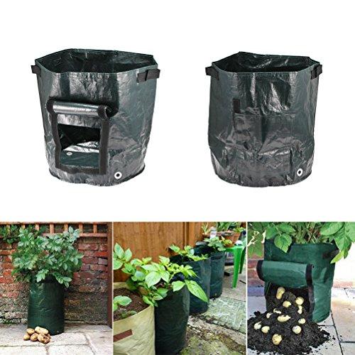 Sunsbell Sac Pomme de Terre, Pommes de Terre Planting PE Sac avec Trou de Drainage Culture Poumons en Pot Kit Jardinage (1PC)
