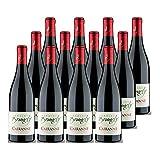 Cairanne Rouge 2019 - Domaine Brunely - Vin AOC Rouge de la Vallée du Rhône - Lot de 12x75cl - Cépages Syrah, Grenache